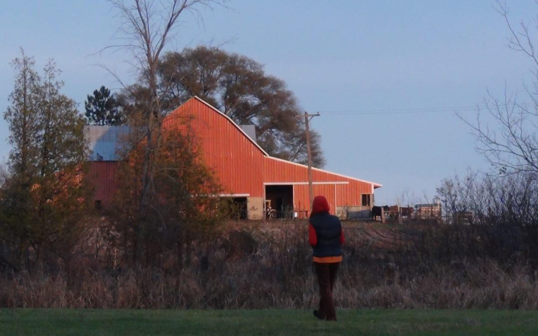 Fall – Baker's Green Acres – Northern Michigan Farm