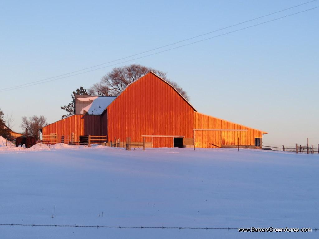 Baker's Green Acres Farm - Beyond Organic Michigan Farm