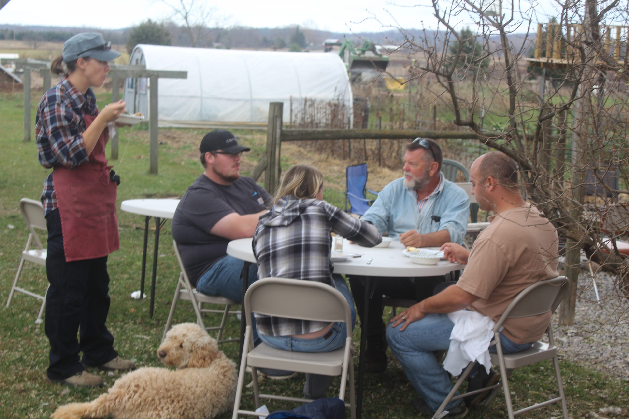 community hog harvest homestead