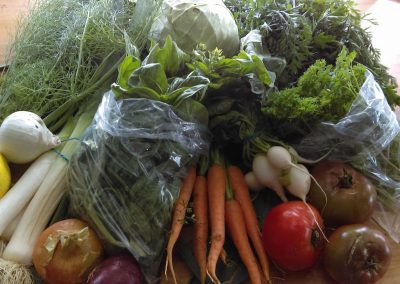 Homesteader's Guild CSA veggies, chemical free